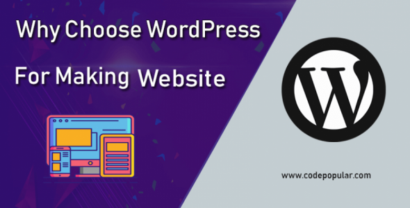 why should to choose wordpress for making website