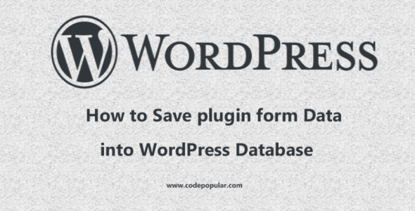 How to Save Plugin Information to the WordPress Database