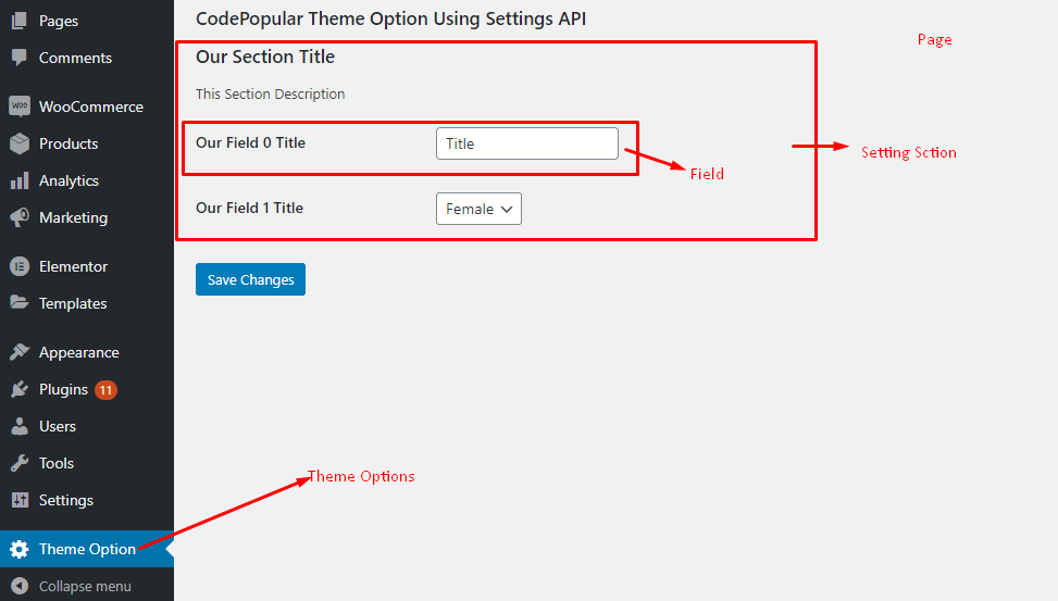 WordPress Settings API