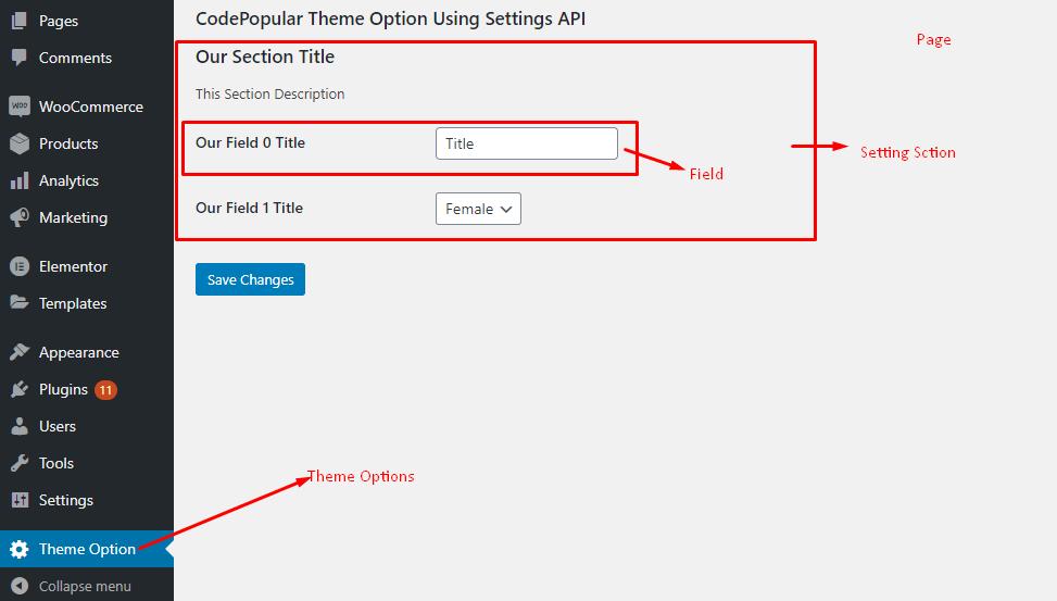 WordPress Settings API